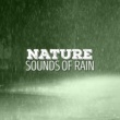 Sounds of Nature White Noise Sound Effects Raining Outside