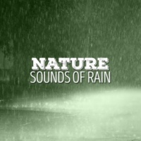 Sounds of Nature White Noise Sound Effects Wind and Rain