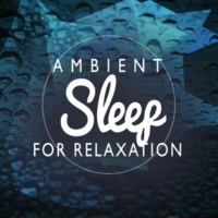 Ambient Music Sleep Therapy Horizons