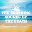 Beach Sounds 2016 Wading in Waves