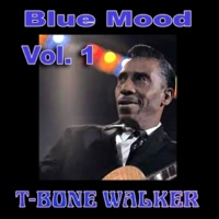 T-Bone Walker You Don't Love Me