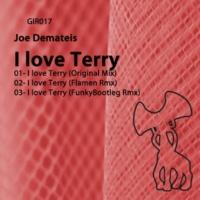 Flamen&Joe Demateis I Love Terry