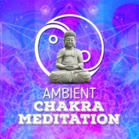 Chakra Meditation Specialists Daydreaming