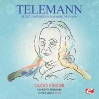 Camerata Rhenania,Clivio Waltz&Guido Steiger Flute Concerto in D Major, TWV 51:D1: IV. Allegro