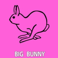 Big Bunny Underground Tech
