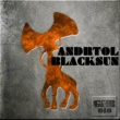 ANDRTOL Black Hole