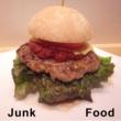 GUMI/CYBER DIVA Junk Food