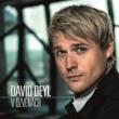 David Deyl V ozvěnách