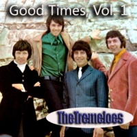 The Tremeloes What a State I'm In