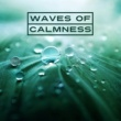 Nature Sounds Relaxation: Music for Sleep, Meditation, Massage Therapy, Spa Waves of Calmness ‐ Nature Calm Music, Soft Sounds, New Age Relaxation, Chilled Water Waves