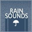 Rain Sounds Rain Sounds