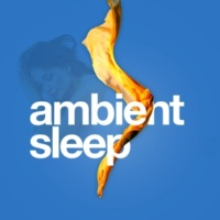 Music for Absolute Sleep Watching Time Flow
