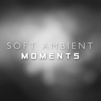 Music for Quiet Moments Beholder