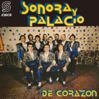 Sonora Palacio No Tuve Nadie