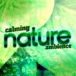 Deep Sleep Nature Sounds Calming Nature Ambience