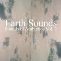 Earth Sounds Against the Mist