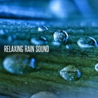 Relaxing Rain Sounds Umbrella