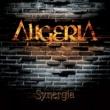 Aligeria Synergia