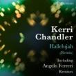 Kerri Chandler Hallelujah (Remix)