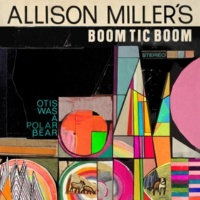 Allison Miller Lullaby for Cookie