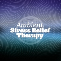 Meditation & Stress Relief Therapy Lost in Portland