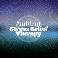 Meditation & Stress Relief Therapy Wax Works