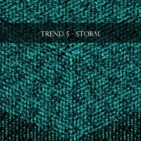 Trend 5 Black Room