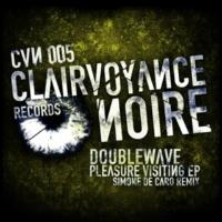 Doublewave Pleasure Visiting