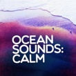 Various Artists Ocean Sounds: Calm