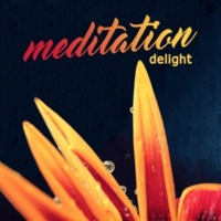 Meditation Awareness Carelessly