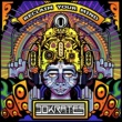 Various Artists Reclaim Your Mind