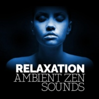 Relaxation - Ambient Singing Wire