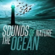 Ocean Wave Sounds&Calm Ocean Sounds Sounds of Nature: The Ocean