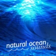 Underwater Deep Sleep White Noise Nature Ocean Sounds,Calm Ocean Sounds&Ocean Waves for Sleep Natural Ocean Sounds
