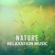 Nature Tribe Nature Relaxation Music ‐ Rest with New Age, Nature Sounds, Music for Stress Relief, Relax Yourself