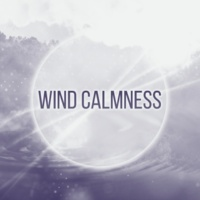 The Calming Sounds Of Nature Calm Wind