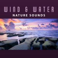 Sounds of Nature Fantastic Flutist