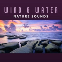 Sounds of Nature Fire and Water