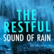 The Relaxing Sounds of Water,Meditation Rain Sounds & Deep Sleep Rain Sounds&Sounds of Nature White Noise Sound Effects The Restful Sound of Rain