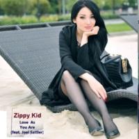 Zippy Kid feat. Joel Sattler Love as You Are