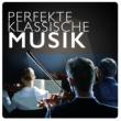 Klassische Musik für Kinder Symphony Orchestra,Klassisk Musik Orkester&Rockabye Lullaby Perfekte Klassische Musik