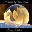 Franz Schubert A Touch Of Class With Franz Schubert