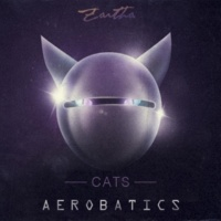 Tune Off&Aerobatics Cats
