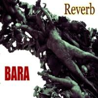BARA Reverb