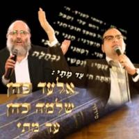 אלעד כהן&שלמה כהן עד מתי