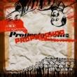 Proyecto Solaz Propaganda