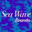 Ocean Wave Sounds Small Waves onto Sandy Beach