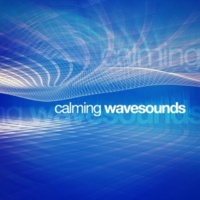 Sea Sounds 2016 Waves: Channel