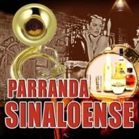 Banda Sinaloense Hermanos Sanchez De Buena Gana