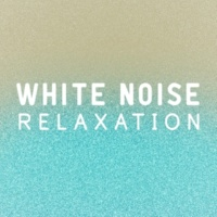The Noise Remedy Experiment White Noise: Slow Waves